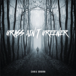 "Chris Brown annonce son nouveau single ""GRASS AIN'T GREENER"""