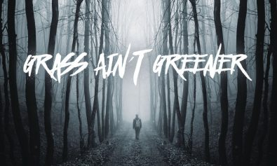 Chris-Brown-Grass-Aint-Greener-2016-rnb_mag_com